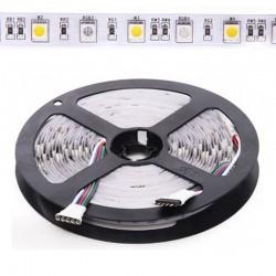 Tira 12W 24V RGB+BC SMD5050 60Leds/metro