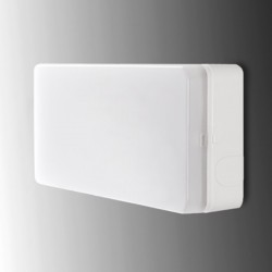 Luz emergencia Led rectangular 60Lm IP44