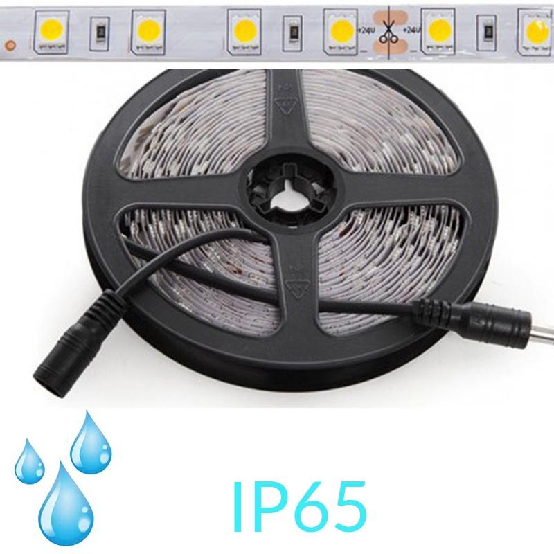 Tira 12W 24v SMD5050 IP65 60Leds/metro