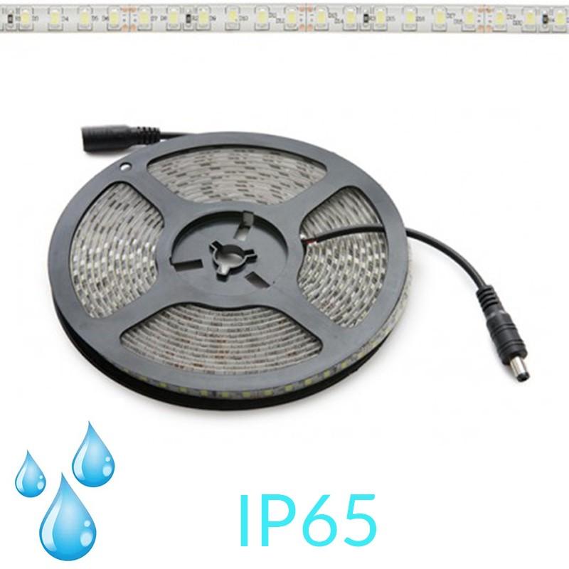 Tira 12W 24V SMD2835 IP65 120Leds/metro